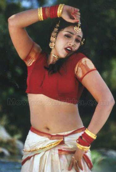 Meena Hot Image « Actress In Saree,NAvel And Waist