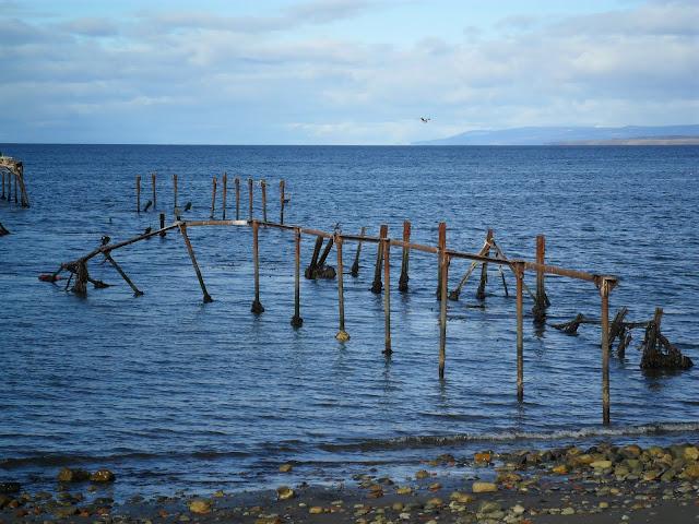 ESTREITO DE MAGALHÃES - No rasto de Fernão Magalhães, uma reflexão em Punta Arenas | Chile
