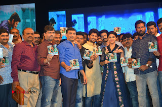 Nenu Local Audio Launch Stills  0423.JPG