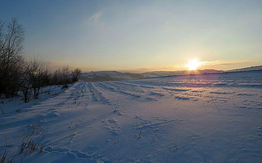 Promienie słońca kładą się po obielonych zagonach.