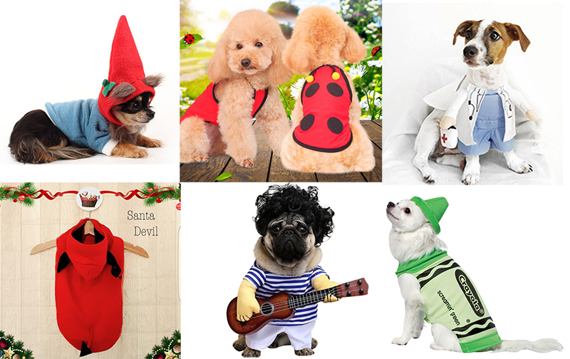 Halloween Dog Costumes: Your Last Minute Shopping Guide ...