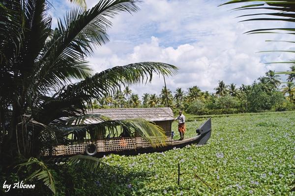 Kerala-cea-frumoasa-Sudul-Indiei