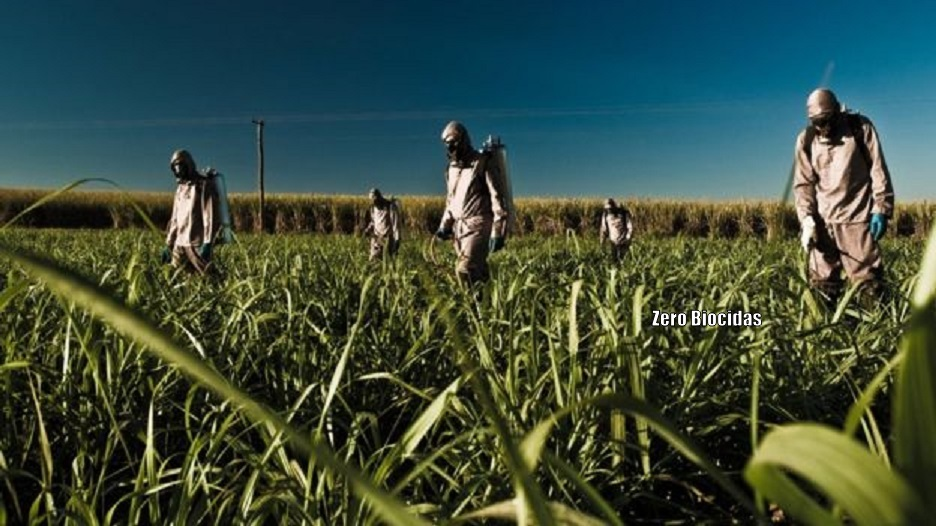 pesticides in agriculture essay hook