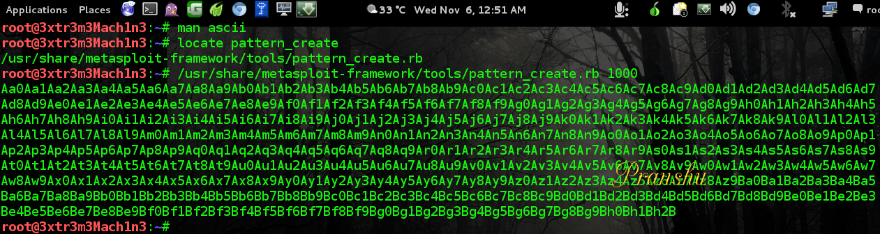 The Life of a Penetration Tester: Buffer Overflow Attack