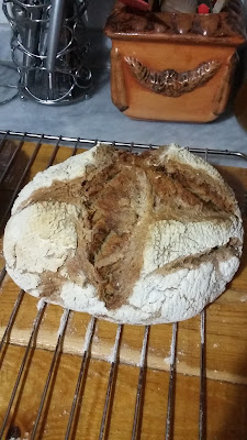 20160103 215526 - Baştan Sona;''Bir Ekmek Yapmak'' (Bu Kez Çavdar Unu Kullanarak)