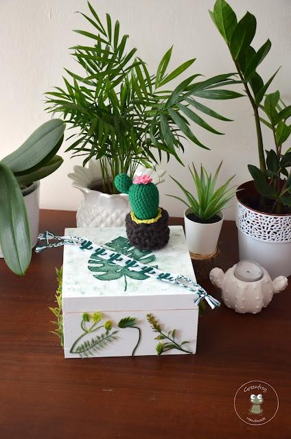 Wymianka kaktusowa – podsumowanie