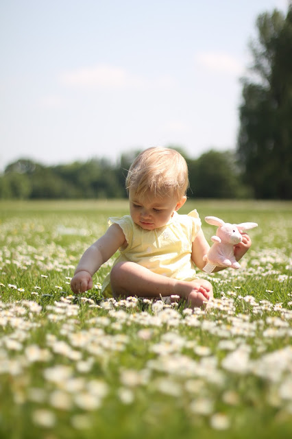 baby girl sat in field of daisies Cwmbran Boating Lake South Wales