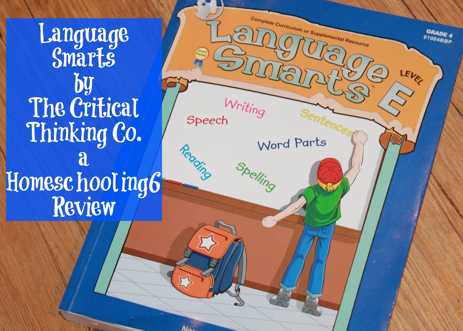 critical thinking and language essay Language plays an important role in critical thinking because critical thinking involves input of information, the language used in the input of information becomes a critical factor in coming out the result of the analysis.