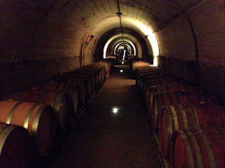 Wine cellar in Penedes where Cava is produced
