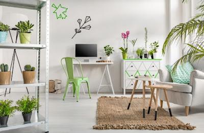 Desain Terbaru Interior Rumah Minimalis Dengan Tampilan Tanaman Terbaik