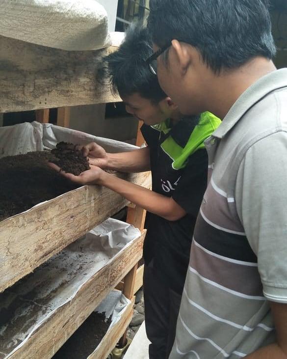 Panduan Praktis  Beternak CacingTanah Pemula