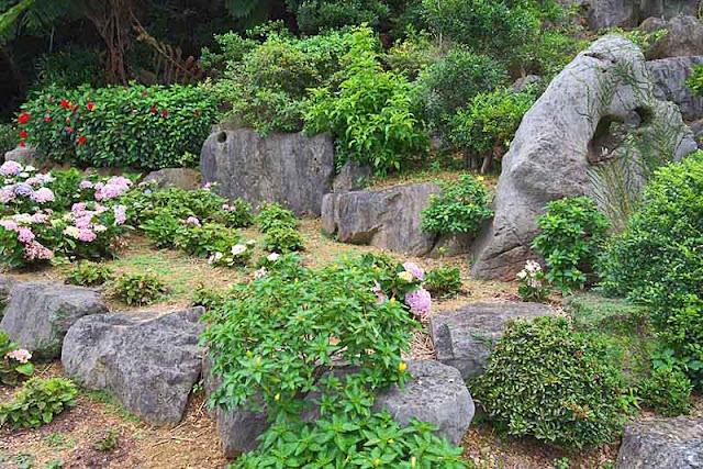 rocks,pink hydrangea, garden