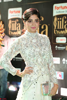 Poonam Kaur in Beautiful Floor Length Gown at IIFA Utsavam Awards 2017  Day 2  Exclusive 34.JPG