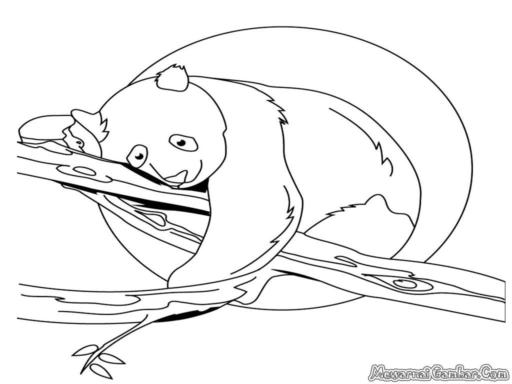 Kumpulan Contoh Sketsa Gambar Binatang Buas Informasi Masa