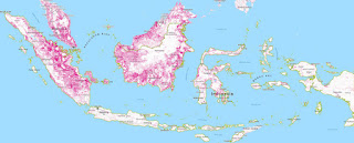 Forest loss (areas in pink) in Indonesia from 2001 to 2016. (Credit: Global Forest Watch) Click to Enlarge.