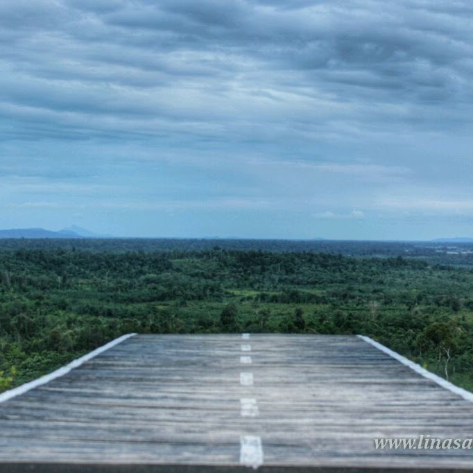 Taman Wisata Alam Gunung Gundul Lokasi Berwisata Terbaru di Natuna