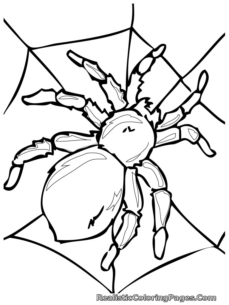 free printable bug coloring pages - photo#32