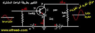 طريقة التكبير بالباعث المشترك للترانزستور  مكبر ، مضخم بالباعث المشترك  ، المشع Common-Emitter-Amplificatioin ، إميتر وكوليكتور وبيز
