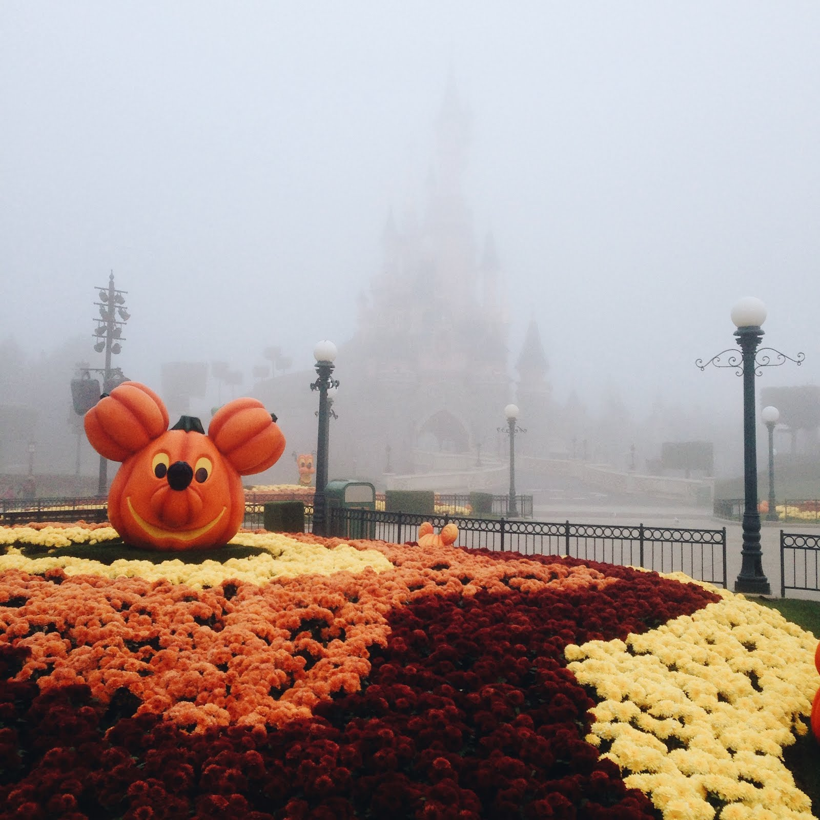 disney land paris at halloween, decorations, orange and yellow flowers, autumn, fall, ravacholle belgium based lifestyle blog