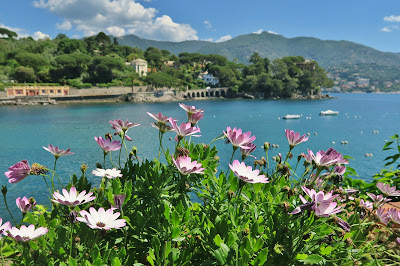 Pomaro Bay, San Michele di Pagana, view toward Capo Pomaro & Rapallo.