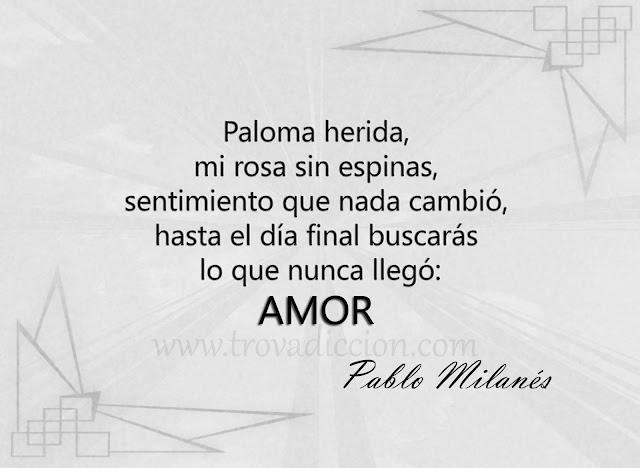 Paloma herida,  mi rosa sin espinas,  sentimiento que nada cambió,  hasta el día final buscarás lo que nunca llegó:  amor.