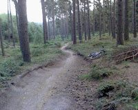 Cannock chase fast single track- by: © Paul c Walton
