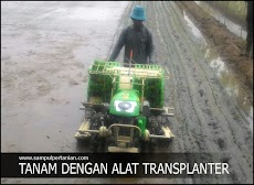 Transplanter padi mempercepat proses tanam (Tandur)