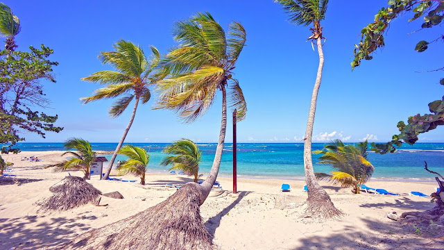 Playa Dorada Vacation Packages, Flight and Hotel Deals