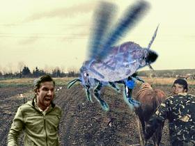 害虫(素材使用)