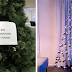 30 Innovative Christmas Tree Ideas That Blew Our Mind