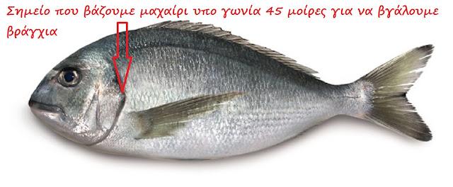 Πώς καθαρίζουμε πολύ εύκολα τα ψάρια;