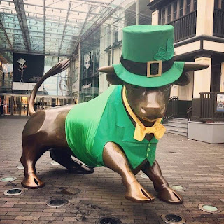 Birmingham Bull in St Patrick's outfit