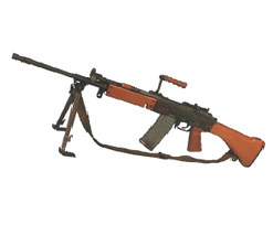 forpoliceman-5.56 mm  INSAS LMG