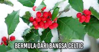 Ini Loh Makna Warna Merah dan Hijau Saat Natal Bermula dari bangsa Celtic