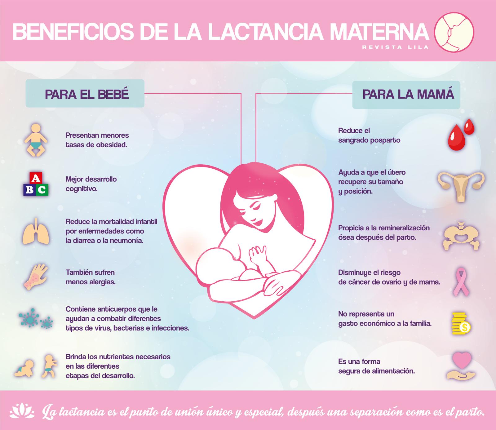 Lactancia materna beneficios de la lactancia materna - Alimentos para producir leche materna ...