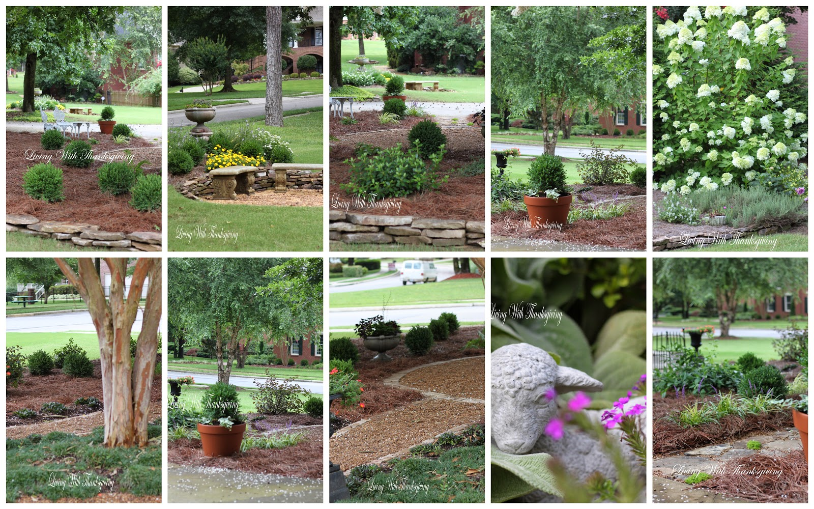 Daughter S New Garden Living With Thanksgiving