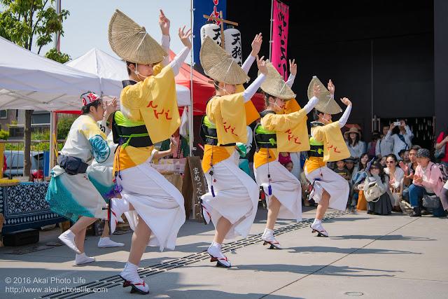 座・高円寺前、阿波踊り、天狗連の舞台踊りの写真