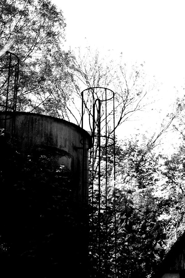 Blog + Fotografie by it's me! | fim.works | SchwarzWeissBlick No 15 | verlassenes Gehöft | Lost Place | zugewucherter Silo