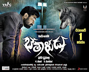 bethaludu movie wallpapers-thumbnail-2