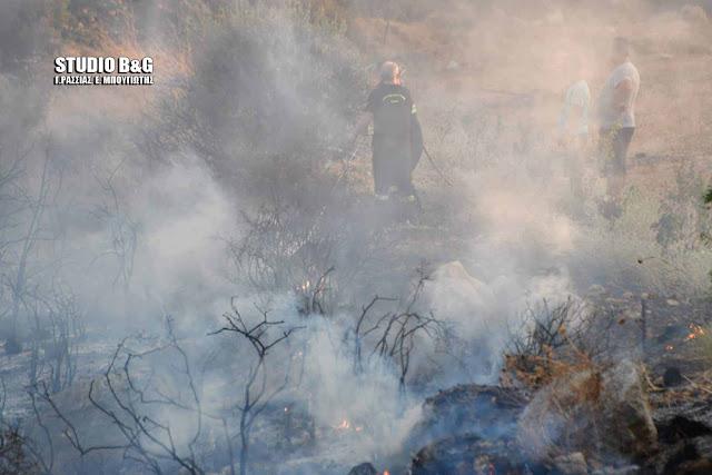 Πυρκαγιά σε έκταση ανάμεσα στην Αγία Τριάδα και το Λάλουκα