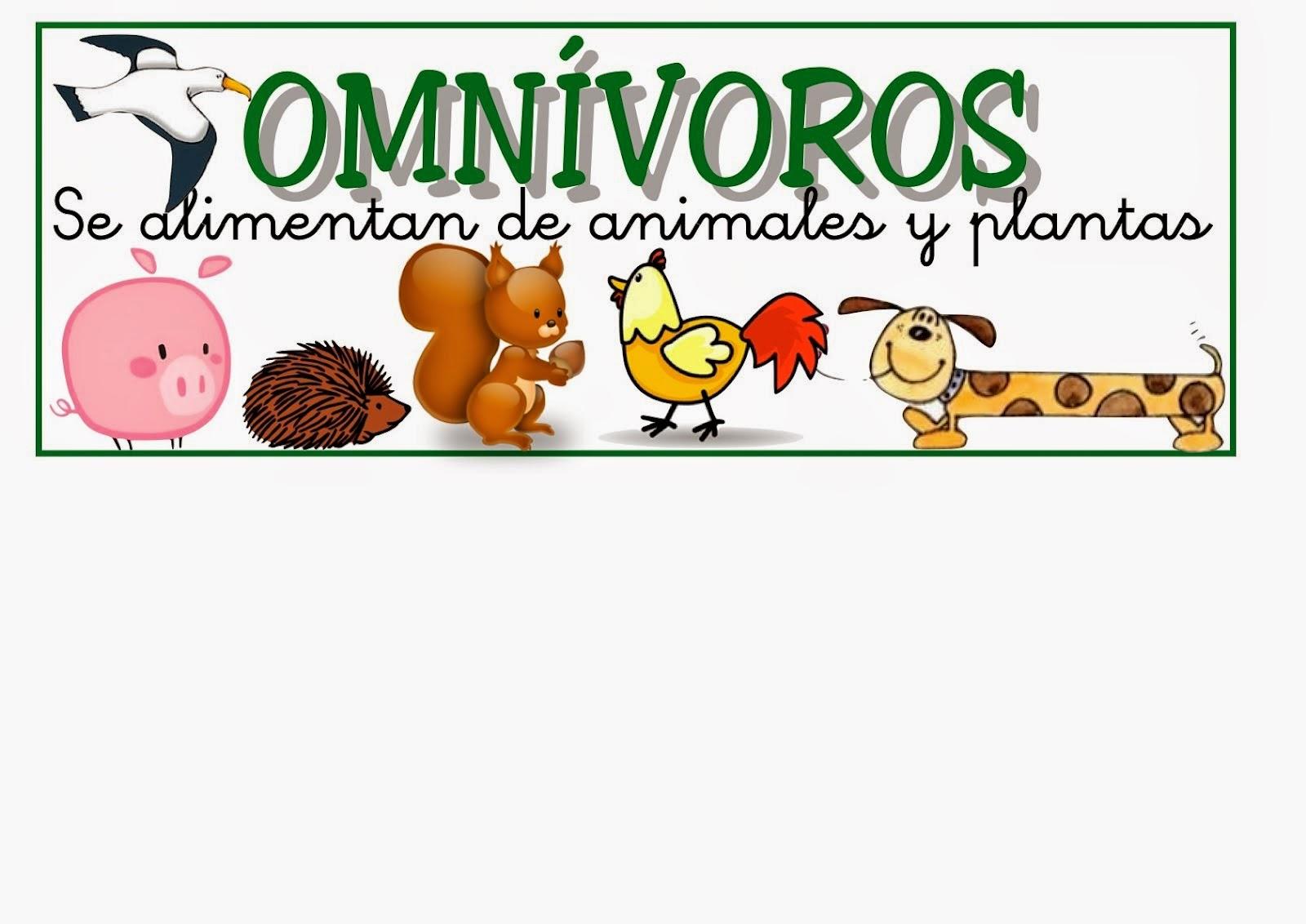 Animales Omnivoros Dibujos Para Colorear: Imagenes De Animales Omnivoros Para Imprimir