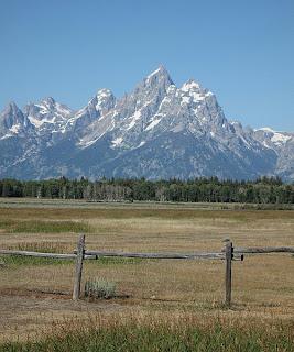 Grand Teton Pastoral View