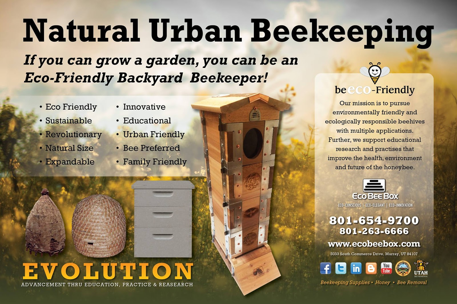 Mini Urban Beehive For All Beekeepers