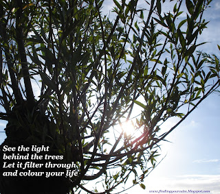 Image of sunlight shining through branches of a tree with text: See the light behind the trees, let it filter through and colour your life