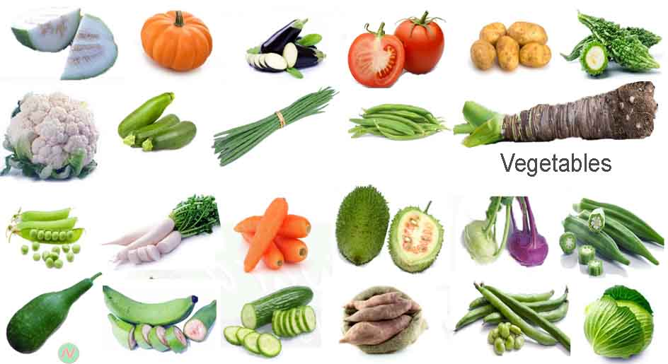 Vegetables Name with Relevant Necessary Vocabulary | Word Meaning ...