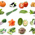All Vegetables English Name & Images | Necessary Vocabulary