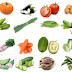 Vegetables Name with Relevant Necessary Vocabulary | Word Meaning & Image