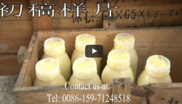 Απίστευτο βίντεο παραγωγής βασιλικού πολτού από την Κίνα