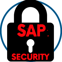 Learn SAP Security