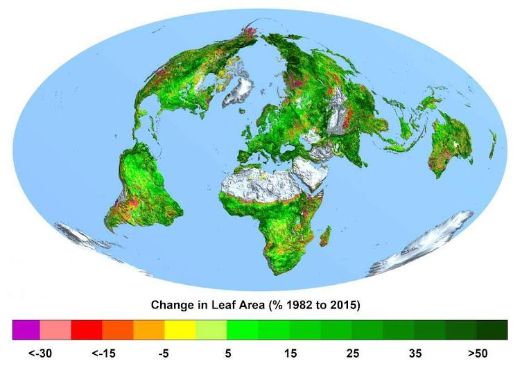 Mapa mostra o aumento da superfície foliar nos últimos 33 anos. Fonte CREAF.